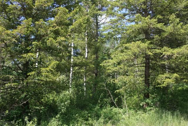 SVR PLAT 6 Oak Dr, Star Valley Ranch, WY 83127 (MLS #19-2670) :: West Group Real Estate