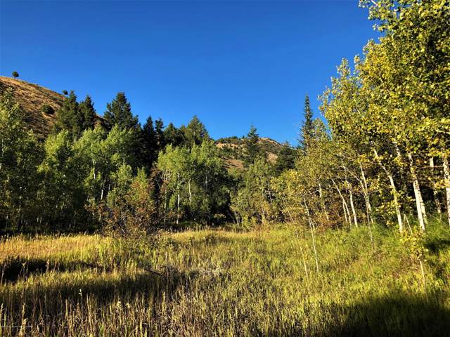 N/Y/A County Road 152, Smoot, WY 83126 (MLS #19-2856) :: Sage Realty Group