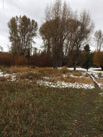 Lot 14 Miles Meadow, Afton, WY 83110 (MLS #19-2906) :: West Group Real Estate