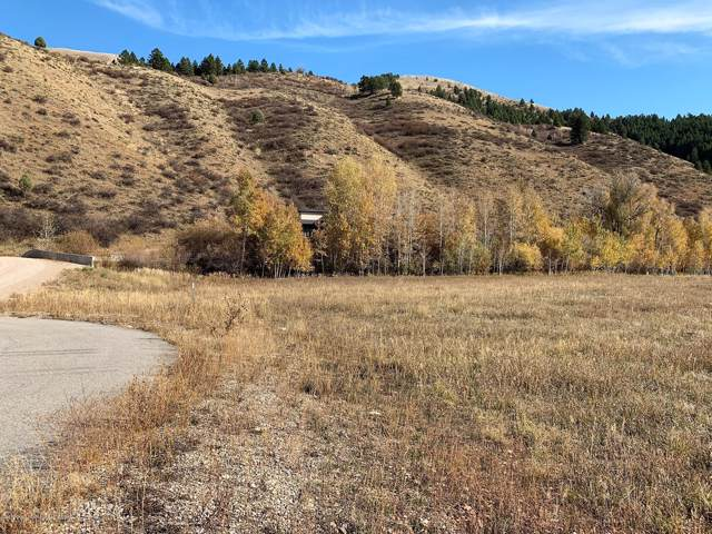 LOT 50 Huckleberry Hollow, Rockbridge, Afton, WY 83110 (MLS #19-3101) :: Sage Realty Group