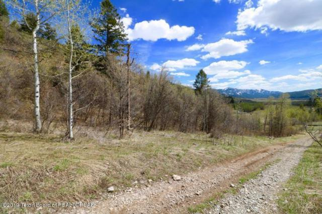 23 & 55 Strawberry Creek Rd, Bedford, WY 83112 (MLS #19-345) :: West Group Real Estate