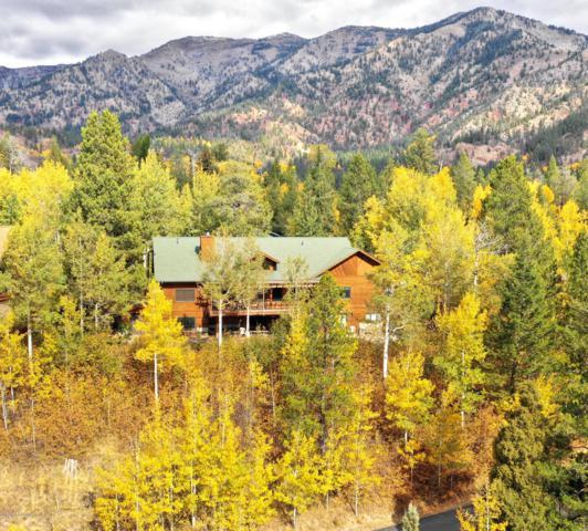 446 Aspen Ridge Trl, Alpine, WY 83128 (MLS #19-412) :: Sage Realty Group