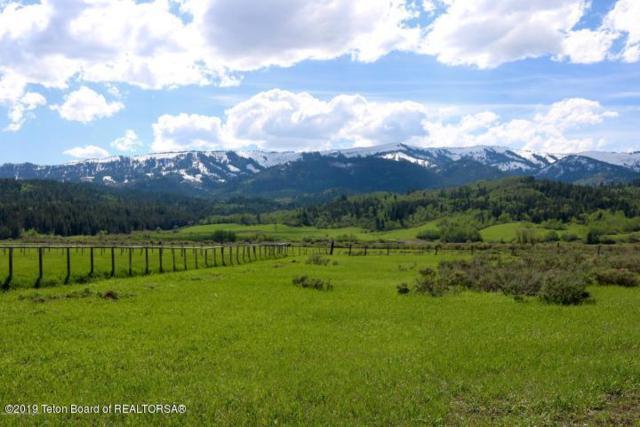 17&18 Fox Trail, Alpine, WY 83128 (MLS #19-563) :: Sage Realty Group
