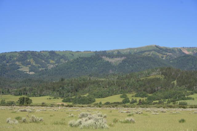LOT 23 Fox Trail, Alpine, WY 83128 (MLS #19-650) :: Sage Realty Group
