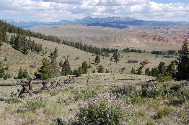 Address Not Published, Dubois, WY 82513 (MLS #19-729) :: Sage Realty Group