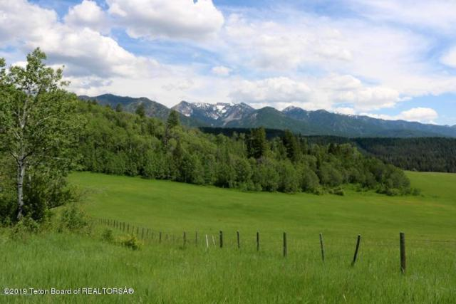 LOT 10 Trail Ridge Rd, Alpine, WY 83128 (MLS #19-789) :: Sage Realty Group