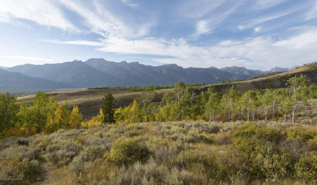 2680 Trader Road, Jackson, WY 83001 (MLS #19-862) :: Sage Realty Group