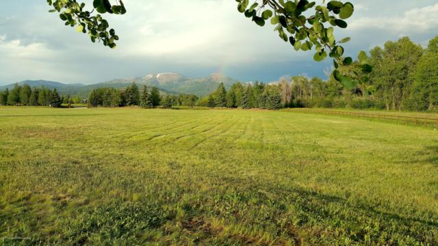 35-65 Creekside Road, Alta, WY 83414 (MLS #19-901) :: Sage Realty Group