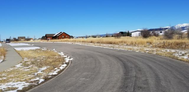 339 Palisade Trail, Driggs, ID 83422 (MLS #19-923) :: Sage Realty Group