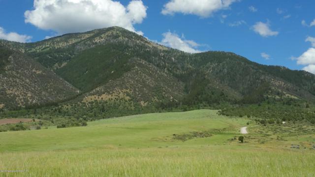 151 Elk Path L5b2, Swan Valley, ID 83428 (MLS #19-969) :: West Group Real Estate