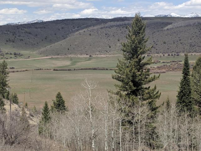 Lot 2 Willow Creek Ranch, Thayne, WY 83127 (MLS #19-970) :: West Group Real Estate