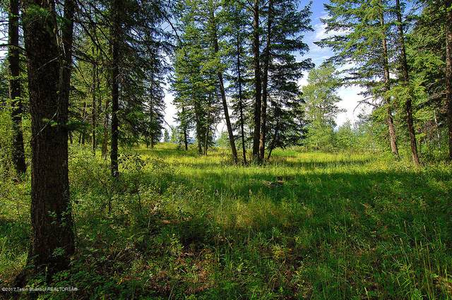 .97 ACRES Lone Star Road, Bedford, WY 83112 (MLS #20-1083) :: Sage Realty Group
