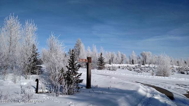 1404 Telemark Trl, Driggs, ID 83422 (MLS #20-116) :: West Group Real Estate