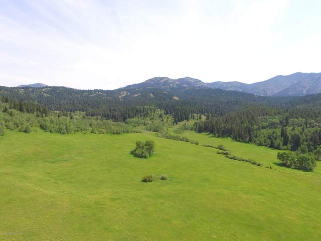 Dell Creek, Alpine, WY 83128 (MLS #20-1376) :: West Group Real Estate