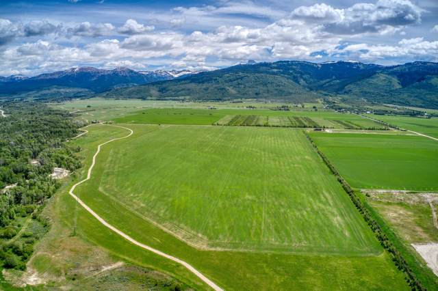 636 Creek Bottom Trl, Driggs, ID 83422 (MLS #20-1594) :: Sage Realty Group