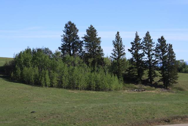 10500 Sunlight Circle Lot 33, Tetonia, ID 83452 (MLS #20-1609) :: West Group Real Estate