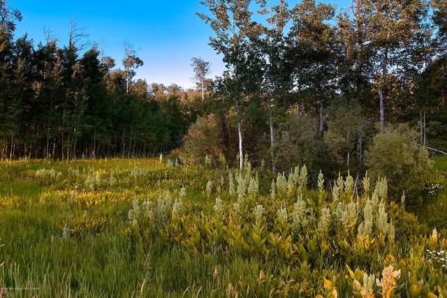 6379 N Leigh Creek Rd, Tetonia, ID 83452 (MLS #20-1928) :: Sage Realty Group