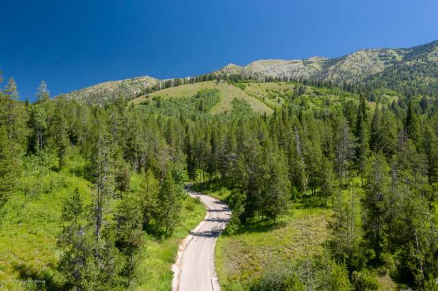 LOT 3 Indian Creek, Alpine, WY 83128 (MLS #20-1954) :: Sage Realty Group