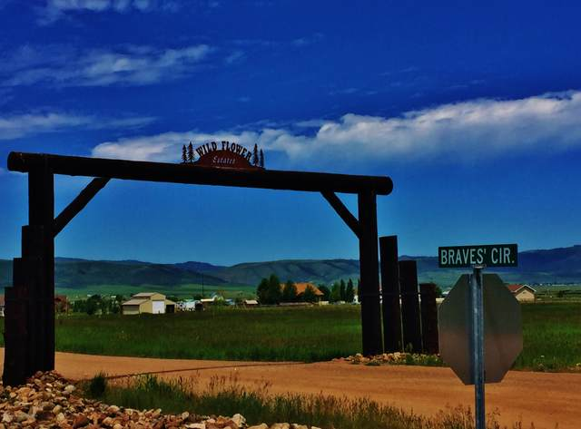 LOT #8 Braves Circle, Afton, WY 83110 (MLS #20-1998) :: Sage Realty Group
