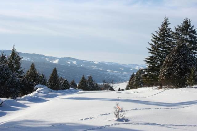 LOT59B4 Cutthroat Run, Irwin, ID 83428 (MLS #20-2048) :: Sage Realty Group