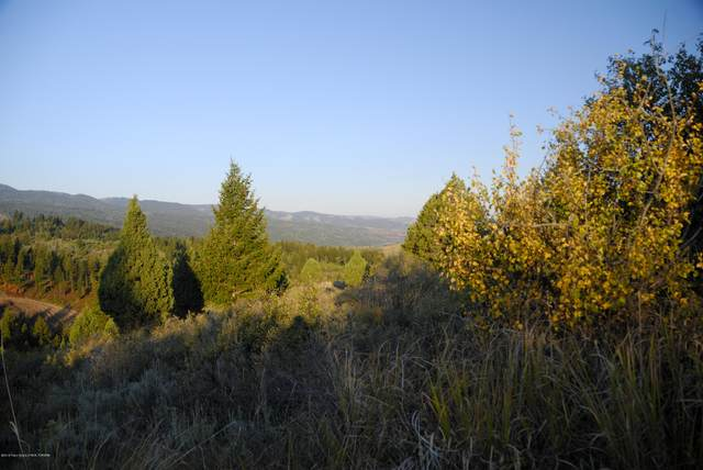 LOT47B1 Cutthroat Run, Irwin, ID 83428 (MLS #20-2053) :: Sage Realty Group