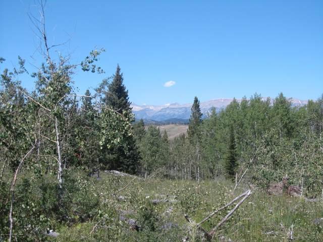 TBD Aspen Drive, Bondurant, WY 82922 (MLS #20-2090) :: Sage Realty Group