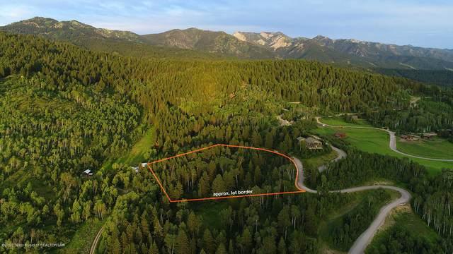 LOT 77 Black  Bear Lane, Alpine, WY 83128 (MLS #20-2149) :: West Group Real Estate