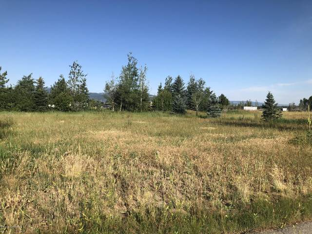 248 Reed Rd, Victor, ID 83455 (MLS #20-2151) :: Sage Realty Group