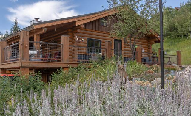 247 Aspen Ln, Alpine, WY 83128 (MLS #20-2338) :: Sage Realty Group