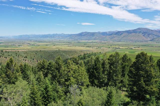 TRACT A N. N Sprague Creek Drive, Fairview, WY 83119 (MLS #20-2488) :: Sage Realty Group
