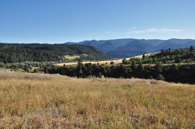TBD Trail View Rd, Irwin, ID 83428 (MLS #20-2606) :: Sage Realty Group