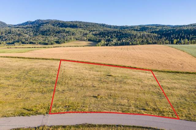 3321 Coneflower Cir, Victor, ID 83455 (MLS #20-2637) :: Sage Realty Group