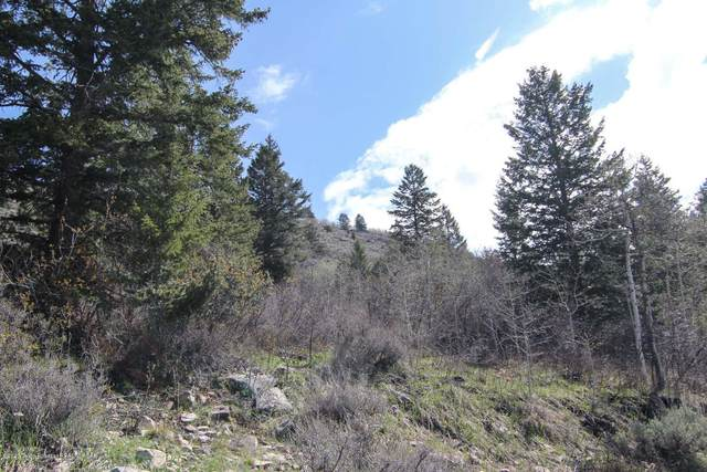 Address Not Published, Victor, ID 83455 (MLS #20-2864) :: West Group Real Estate