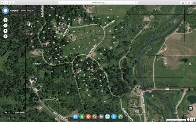 Lot 20 Alpine Meadow Loop, Alpine, WY 83128 (MLS #20-2889) :: Sage Realty Group
