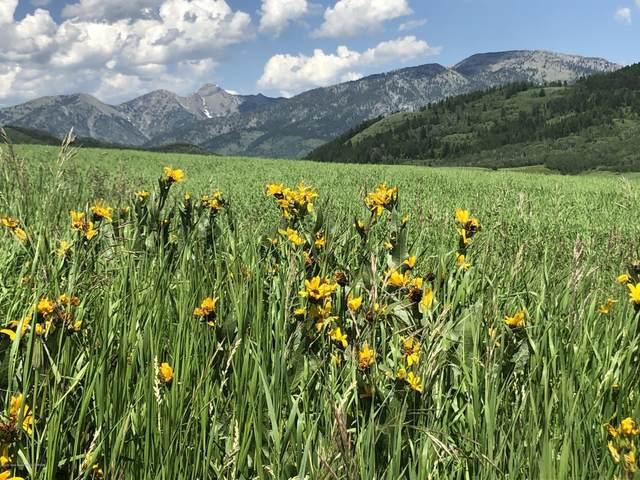 1000 Elk Ridge, Grover, WY 83122 (MLS #20-2976) :: Sage Realty Group