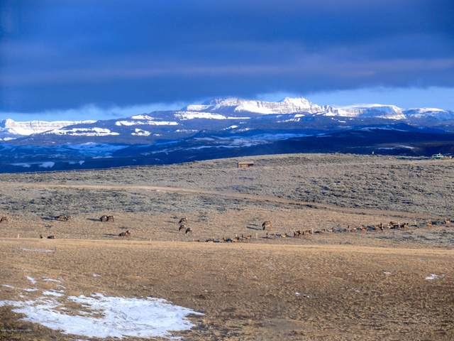 LOT 2 Flying Frog Ln, Dubois, WY 82513 (MLS #20-3081) :: West Group Real Estate
