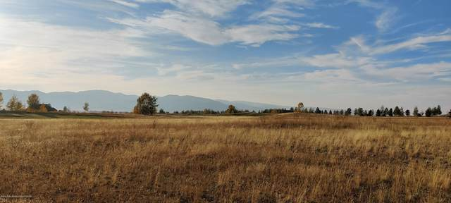 Address Not Published, Victor, ID 83455 (MLS #20-3091) :: Sage Realty Group