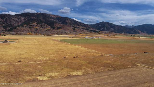 LOT 4 Buttercup Lane, Bedford, WY 83112 (MLS #20-3114) :: West Group Real Estate