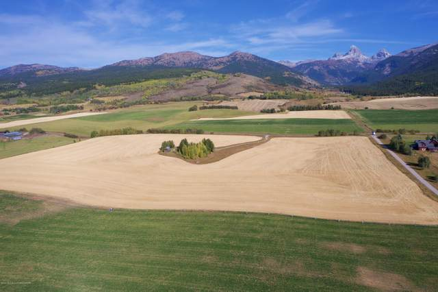Address Not Published, Alta, WY 83414 (MLS #20-3115) :: Sage Realty Group