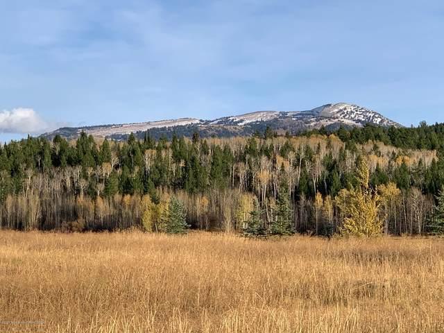 30 Targhee Trail, Victor, ID 83455 (MLS #20-3175) :: Sage Realty Group