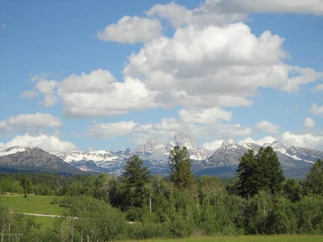 10521 Snowy Lane, Tetonia, ID 83452 (MLS #20-3182) :: Sage Realty Group