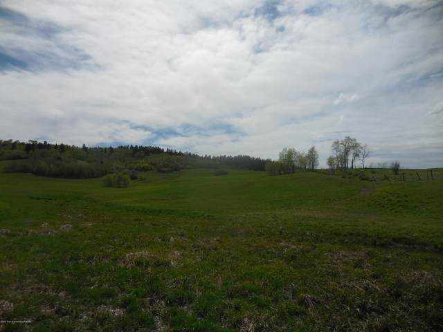 TBD 123 CO. RD., Bedford, WY 83112 (MLS #20-3242) :: Sage Realty Group