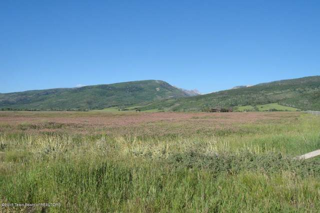 Address Not Published, Victor, ID 83455 (MLS #20-3279) :: Sage Realty Group