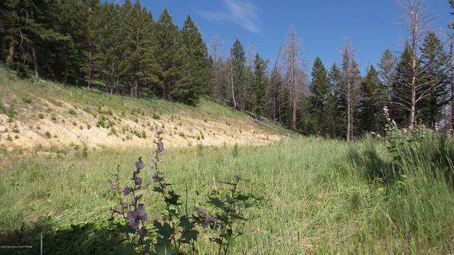 LOT 27 Porcupine Drive, Dubois, WY 82513 (MLS #20-339) :: Sage Realty Group