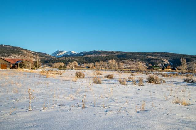 1077 Avalanche Cir, Victor, ID 83455 (MLS #20-3555) :: West Group Real Estate