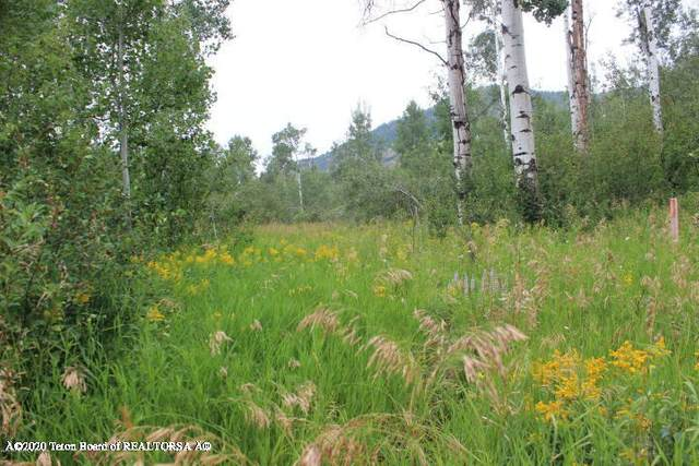 LOT 24 Quaking Aspen Wat, Etna, WY 83127 (MLS #20-476) :: West Group Real Estate