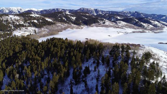 LOT 9 Wilderness Lane, Bedford, WY 83112 (MLS #20-488) :: Sage Realty Group