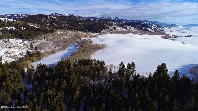 LOT 4 Wilderness, Bedford, WY 83112 (MLS #20-489) :: West Group Real Estate