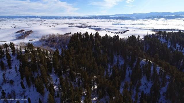 LOT 10 Wilderness Lane, Bedford, WY 83112 (MLS #20-490) :: West Group Real Estate