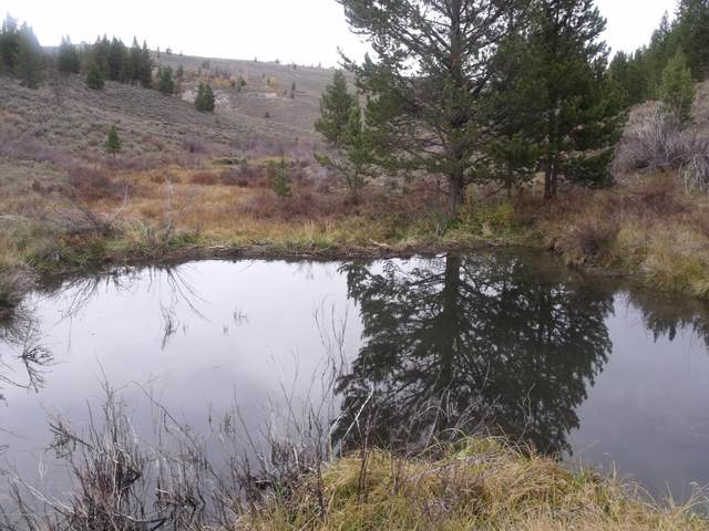 TRACT 24 Hoback Ranches, Daniel, WY 82055 (MLS #20-654) :: Sage Realty Group